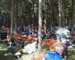 WKZ im Wald